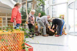 Bei der Arbeit: der Seniorenbeirat richtet das Herbstbild im Foyer des Rathauses an. Foto: Gemeinde Wallenhorst / André Thöle