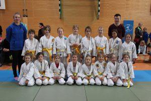 Die Judoka von Blau-Weiss Hollage bei ihrer erfolgreichen Meisterschaft. Foto: Blau-Weiss Hollage