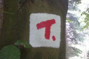 """Auffällige Farbe. So sieht die neue Farbmarkierung für die """"TERRA tracks"""" aus. Foto: Terra.Vita/Sebastian Langen"""