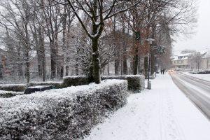 Der Winter ist im Zentrum von Wallenhorst angekommen. Foto: Wallenhorster.de
