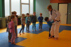 Eindrücke vom Judoprojekt im Kindergarten St. Raphael. Foto: Blau-Weiss Hollage