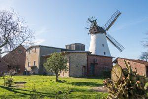 Bei einer Führung können die Gäste auch hinter die Kulissen der Windmühle Lechtingen schauen. Foto:Thomas Remme