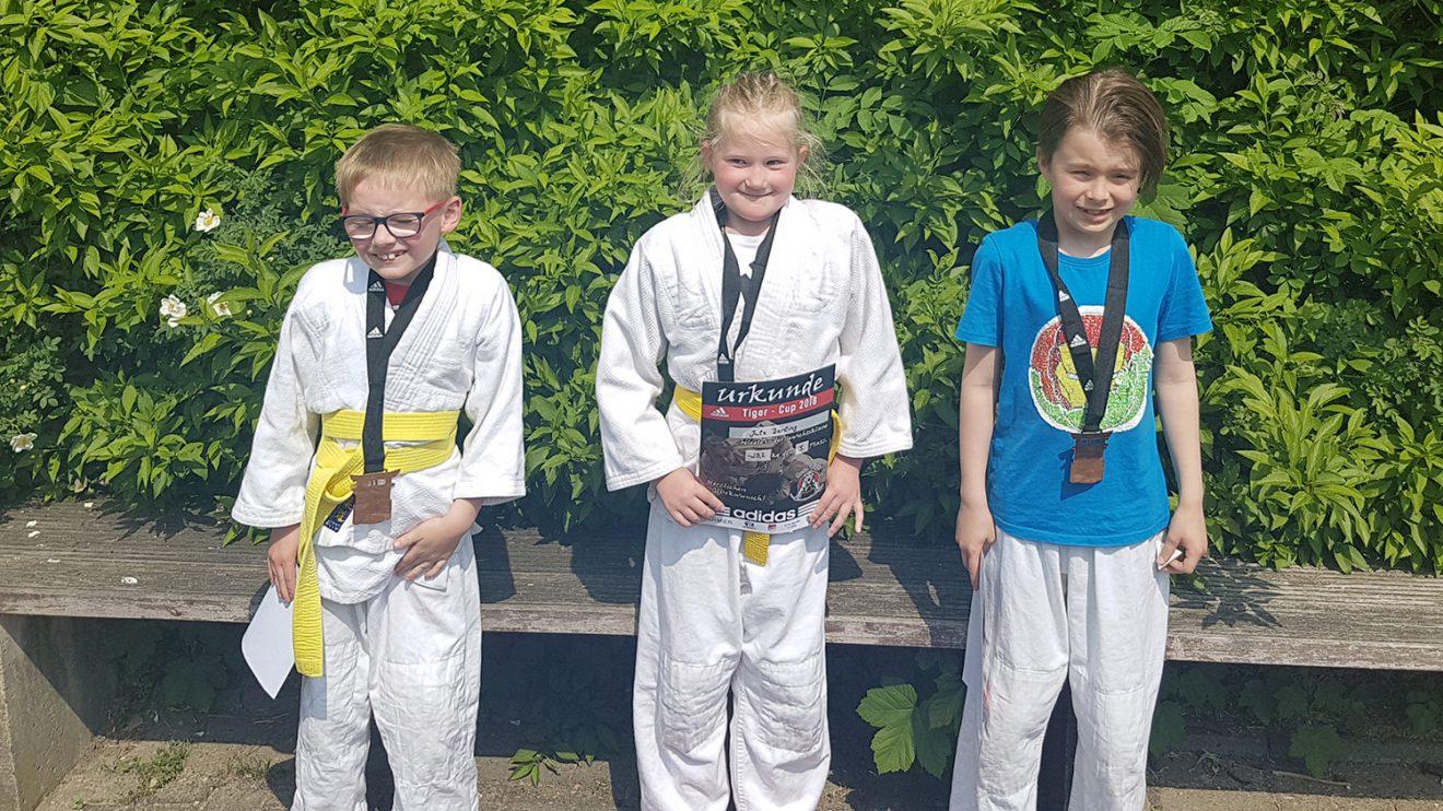 Die Blau-Weissen Teilnehmer in der Altersklasse u10 beim Tiger Cup. Foto: Blau-Weiss Hollage