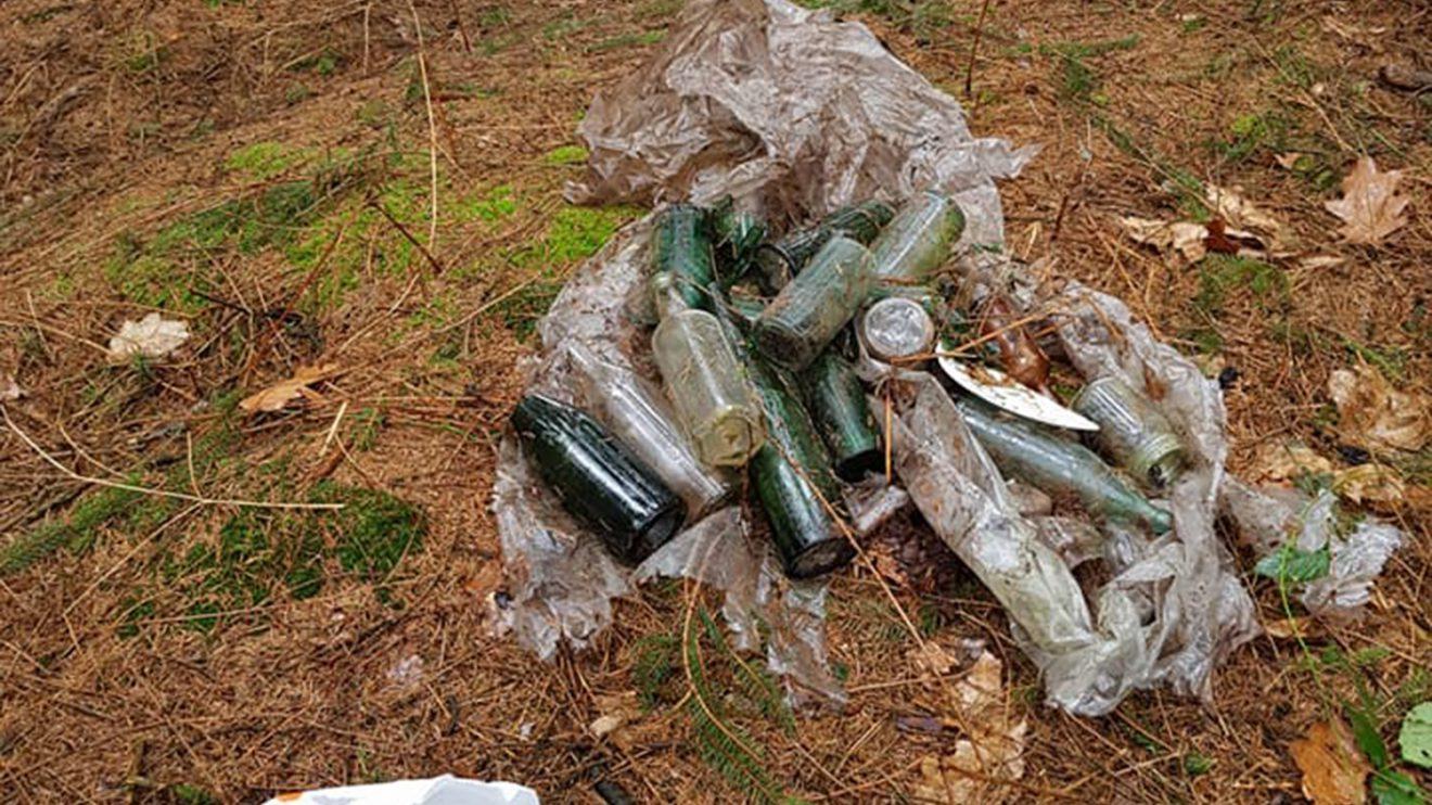 In den Wallenhorster Wäldern gibt es viele illegal entsorgten Abfälle. Foto: Saubermacher / City Cleaners / Birgit Schad