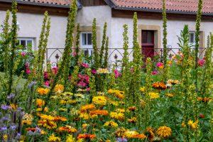 """Beim Ruller Haus kann man neben dem Garten auch die Kunstausstellung """"come together"""" besuchen. Foto:B&M Imeyer"""