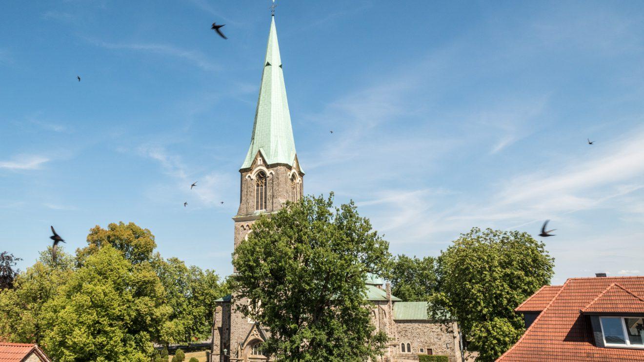 Mauersegler umkreisen die St. Alexanderkirche in Wallenhorst. Foto:Thomas Remme