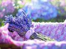 Die Teilnehmer können im Ruller Haus aus getrockneten Garten- und Wildkräutern ihren persönlichen Kräuterbund zusammenstellen. Symbolfoto: Pixabay /jill111