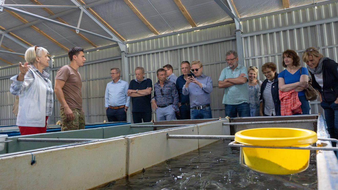 60 Tonnen Kaviar werden jährlich in Stawiguda produziert. Die Störe stammen dabei ausschließlich aus eigener Zucht, die etwa zehn bis zwölf Jahre in Anspruch nimmt. Foto: André Thöle