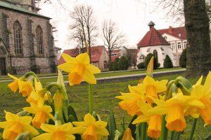 Ab in den Frühling: Viele tolle Aktionen finden wieder beim Wallenhorster Frühlingserwachen statt. Foto: Rothermundt / Wallenhorster.de