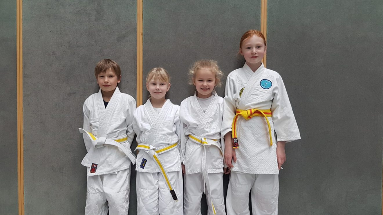 Die vier jungen Judoka von Blau-Weiss Hollage bei den Bezirkseinzelmeisterschaften der u10 in Wildeshausen. Foto: Blau-Weiss Hollage