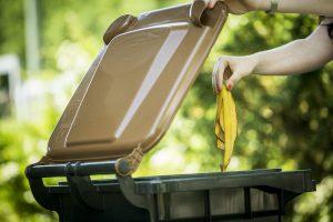 In den warmen Sommermonaten können einige Tipps zum richtigen Umgang mit den Bioabfällen beachtet werden. Foto: A.W. Sobott/AWIGO