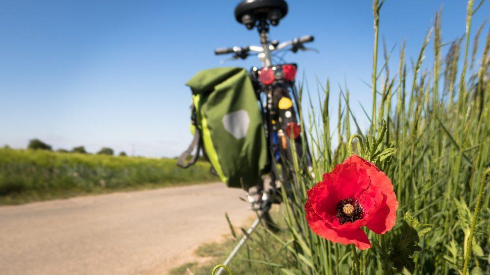 Macht Radfahren in Wallenhorst Spaß? Symbolfoto: Thomas B. / Pixabay