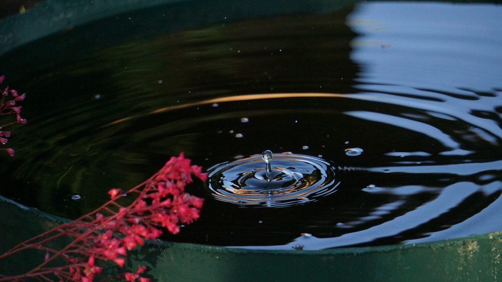Starkregenereignisse, Dürreperioden, Nachhaltigkeit. Das sind die Schlagworte, die die CDW/W als Anlass sahen, den Bereich der Regenwassernutzung näher zu betrachten und einen Antrag im Ausschuss für Umwelt, Energie, Klimaschutz und digitale Entwicklung der Gemeinde Wallenhorst zur Förderung der Regenwassernutzung zu stellen. Symbolfoto: Werner Augustin Jukel / Pixabay