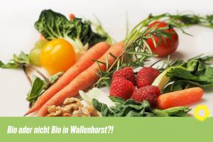 Bio oder nicht Bio in Wallenhorst? Grafik: Bündnis 90 / Die Grünen