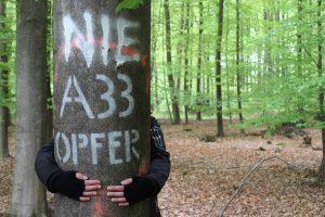 """Die Grünen in Wallenhorst laden zur Exkursion in das FFH Natur-Schutzgebiet Wiehengebirge (""""Ruller Bruch"""") ein. Foto: Lilian-Ruth Sasse"""