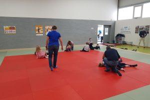 Die Hollager Judo-Abteilung startet mit einer Re-Start-Veranstaltung in die Normalität. Foto: Judo-Abteilung Blau-Weiss Hollage