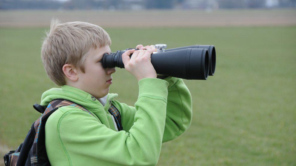 """Unter dem Titel """"Junge Forscher gesucht"""" wird das Ziel verfolgt, die Motivation und Neugierde sowie Offenheit gegenüber MINT in unserem Alltag während der Grundschulzeit zu erhalten und weiterzuentwickeln. Symbolfoto:Frank Wittkowski / Pixabay"""